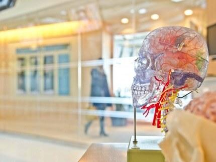 El estudio de la pérdida de la memoria