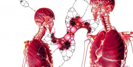 Fibroscan y Esteatoscan. ¿Qué son y qué diagnostican?