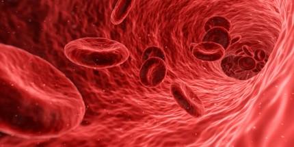 ¿Para qué sirven los análisis de sangre?