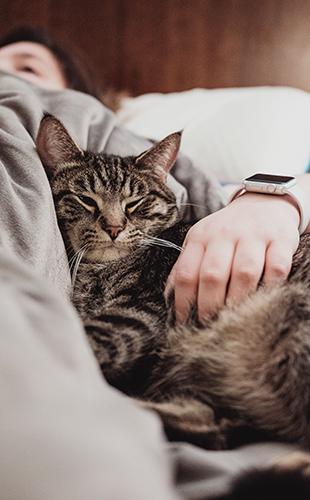 6 de cada 10 persones confessen als seus animals de companyia coses que no expliquen a ningú més.