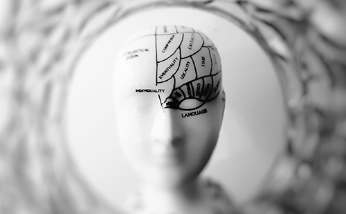 ¿Se regenera el cuerpo humano con los años?